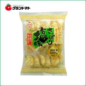 【1ケース】さっぱり塩味( 17枚入×12個入り) ホンダ製菓 【同梱不可】