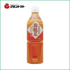 【1ケース】富永貿易 神戸茶房 烏龍茶 PET  (500ml×24本)【同梱不可】【送料無料】