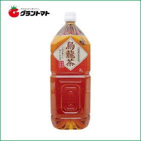 【2ケース】富永貿易 神戸茶房 烏龍茶 PET  (2L×12本)【同梱不可】【送料無料】