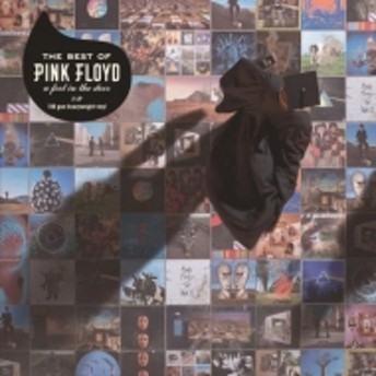 Pink Floyd/Best Of Pink Floyd: A Foot In The Door (2018 Vinyl)(Ltd)