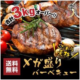 バーベキュー メガ盛りセット 牛カルビ 厚切りハラミ ホルモン 豚肉 鶏肉 合計3kg 送料無料 約10人前