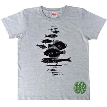 水深別お魚Tシャツ レディース(S M L)