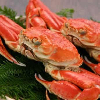 ずわい蟹 2杯