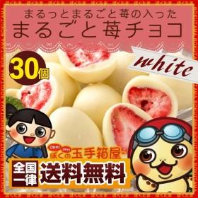 イチゴまるごとチョコレート30個入 いちごのトリュフフリーズドライ 苺 訳あり 送料無料 ポイント消化 SALE セール