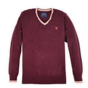 アメリカンイーグル セーター ニット Vネック XL