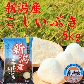 無洗米 米5kg 新潟県産こしいぶき5kg 無洗米5kg 2018 30年産 安いお米 無洗米5kg 無洗米5キロ 美味しいお米