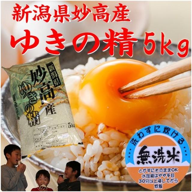 新米 (無洗米)新潟県産 米  5kg×1袋  お米 つきあかり5キロ 令和元年産 2019 美味しいお米 無洗米5kg