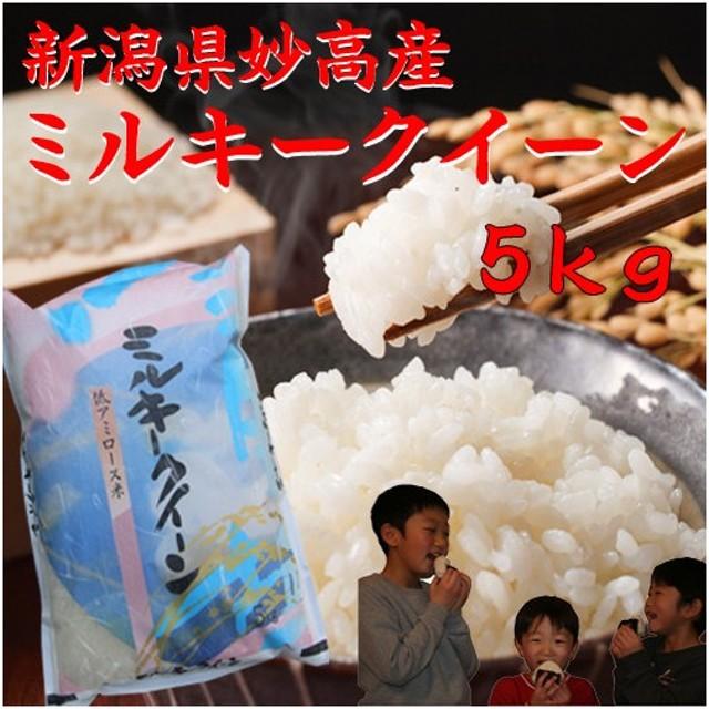 ミルキークイーン5kg 新潟県産 令和元年 2019年 白米 分づき 5キロ 美味しいお米