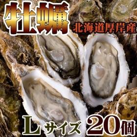 牡蠣 かき 送料無料 北海道 厚岸 殻付き Lサイズ(約20個) 冷蔵 生牡蠣 まるえもん お歳暮 ギフト 年内発送