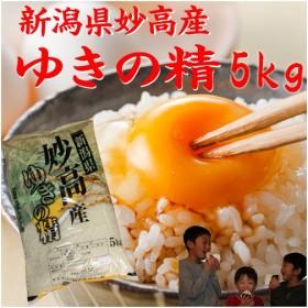新潟県産 米  5kg×1袋  お米 つきあかり5キロ 30年産 2018年産 美味しいお米 白米 分づき 5kg