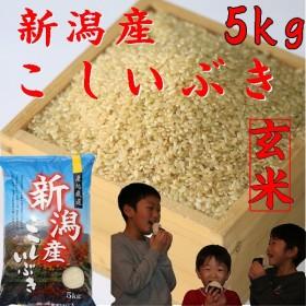 玄米5kg  お米 2018 30年産 新潟産こしいぶき(玄米) 美味しいお米 5kg 5キロ 新潟産5kg 玄米