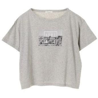 アースミュージックアンドエコロジー earth music&ecology フォトプリントワイドTシャツ (Light Gray Mixture)