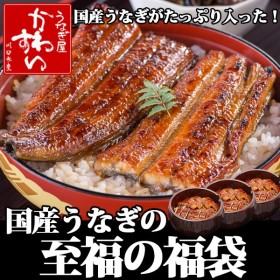 (12時間限定セール)国産うなぎ蒲焼きをたっぷり食べる福袋(うなぎ 鰻 ウナギ)