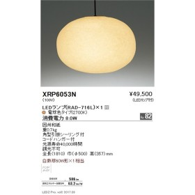 XRP6053N ペンダント アビタ_直送品1_(ABITA)