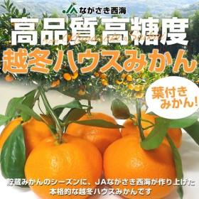 JAながさき西海 越冬ハウスみかん 2.5キロ 3Lサイズ(約12玉)2,780円 蜜柑 ミカン