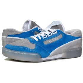 Reebok GS ACT 600 GARBSTORE リーボック GS ACT BLUE/GREY