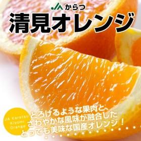 佐賀県より産地直送 JAからつ 清見オレンジ MからSサイズ 2キロ(10から15玉)