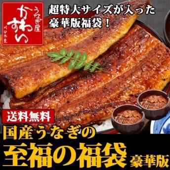 豪華版 国産うなぎ至福の福袋(送料無料 うなぎ 鰻 ウナギ)