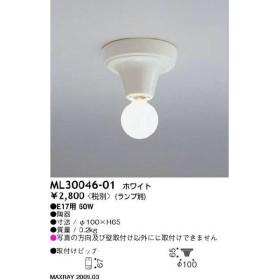マックスレイ 住宅用照明器具 装飾照明 シーリングライト ML30046-01