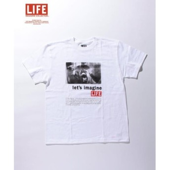 BEAUTY&YOUTH UNITED ARROWS / ビューティ&ユース ユナイテッドアローズ <LIFE x BY> ∴ DOG TEE/Tシャツ