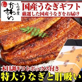 化粧箱付き 特大うなぎ1本と肝吸いのセット 国産 うなぎ 蒲焼き 鰻 ウナギ ギフト プレゼント 送料無料