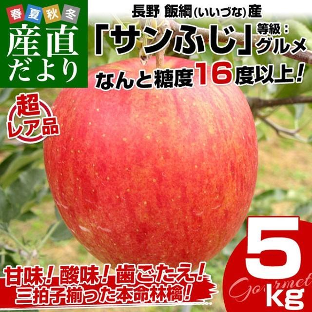 送料無料 長野県より産地直送 JAながの飯綱地区 サンふじりんご 最高等級:グルメ 5キロ (14玉から18玉) 林檎 りんご リンゴ 冬ギフト お歳暮