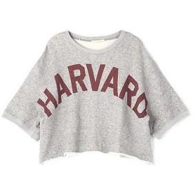 ROSE BUD / ローズ バッド HARVARD スウェットTシャツ