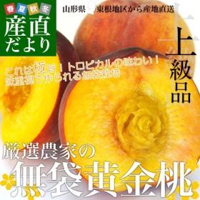 山形県より産地直送 東根の厳選農家 やまがたの桃 無袋黄金桃 約2キロ (6から7玉) 桃 Peach もも