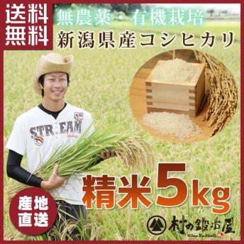 こしひかり 精米5kg 米どころ新潟県産!【29年産】【低農薬・有機肥料】