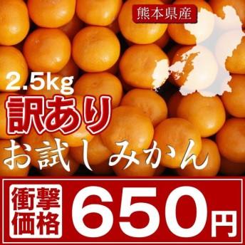 【熊本県産】★訳あり「お試しみかん」2.5kg650円