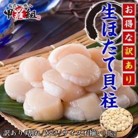 北海道オホーツク海のお得な 【訳あり(割れ/不揃い)】生ほたて貝柱どっさり1kg (ホタテ ほたて 帆立)