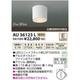 KOIZUMI コイズミ照明 LED防雨型シーリング AU36123L