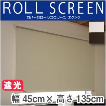 カバー付 ロールスクリーン フルネス エクシヴ 遮光タイプ 規格品 幅45cm 高さ135cm