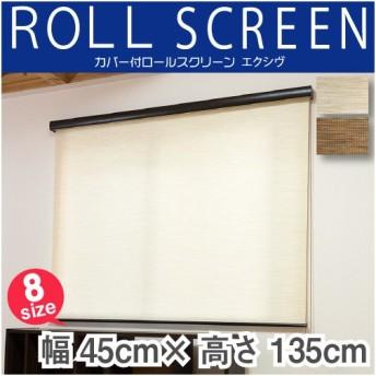 カバー付 ロールスクリーン フルネス エクシヴ ナチュラルタイプ 規格品 幅45cm 高さ135cm