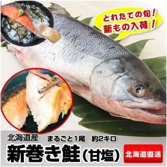 鮭 特Aランク品 産地直送 北海道産 新巻き鮭(甘塩) まるごと1尾 約2kg 特級品 2キロ 鮭 ※冷凍