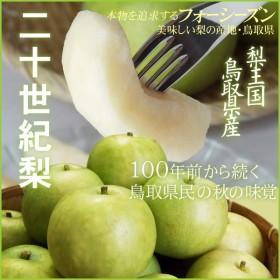 梨 20世紀梨 果肉が柔らかい完熟混じり 二十世紀梨 自家用 訳あり 5kgセット 送料無料 鳥取県産