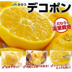 佐賀県産 産地直送 JAからつ デコポン 2キロ(9玉〜12玉)