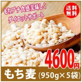 もち麦 4750g(950g×5) 大麦 アメリカ産 glutinous wheat