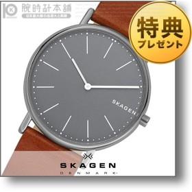 最大ポイント22倍 スカーゲン SKAGEN シグネチャー  メンズ 腕時計 SKW6429