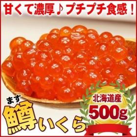 マス(いくら イクラ) 鱒 いくら醤油漬け 500g 北海道産 (鱒子 鱒卵 グルメ 食品) グルメ