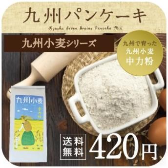 九州小麦 中力粉 チクゴイズミ 小麦 九州産 国産 スイーツづくり 菓子 材料