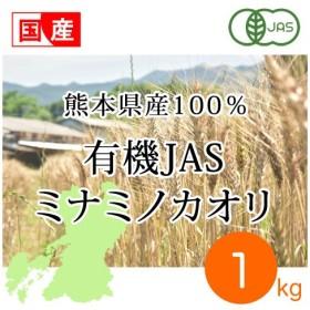 強力粉 有機JAS 熊本県産有機ミナミノカオリ 1kg オーガニック 国産小麦