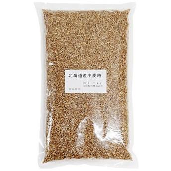 小麦 北海道産小麦粒(春よ恋) 江別製粉 1kg