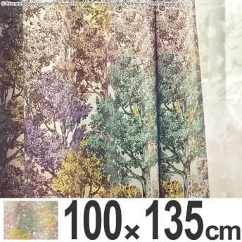 【ポイント最大26倍】カーテン 遮光カーテン スミノエ くまのプーさん ワンダーフォレスト 100×135cm ( ディズニー プーさん ドレープカーテン )