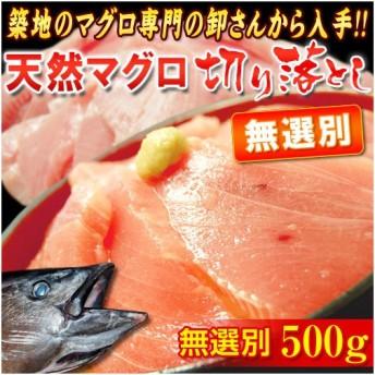 無選別 『天然マグロ』 切り落とし (メバチ・キハダ) 業務用500g!! ※冷凍 sea ○