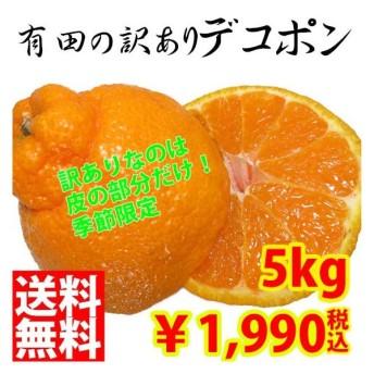 デコポン 有田みかん 訳あり 送料無料 5kg