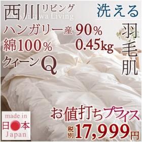 肌掛け布団 クイーン 西川 夏用 フランス産ダウン90% クィーン 羽毛 洗える 綿100% 羽毛肌掛け布団 肌布団