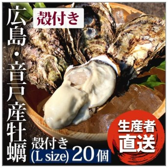 広島音戸産「かき小町」・生牡蠣(加熱用)殻付(L)20個