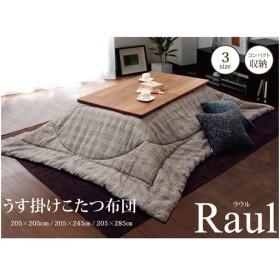 イケヒコ・コーポレーション ラウル/5895309 BE/約205×205cm