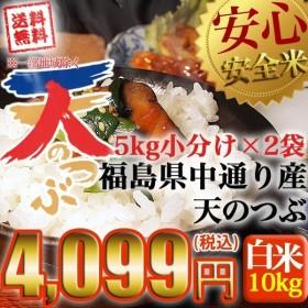 米 お米 平成30年産 福島県中通り産 天のつぶ 白米:10kg(5kg×2個) 送料無料 ※一部地域を除く